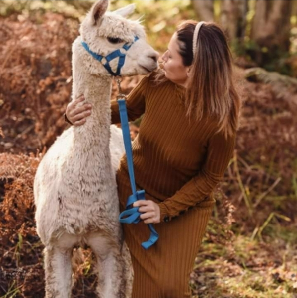 Long Acres Alpacas €250