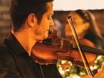 Dinner Violinist €400