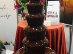 EL Cakes - Chocolate Fountain €250