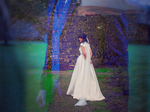 FINNimaje Wedding Artography €900