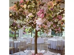 Dream Weddings and Events €299