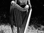 Fiana Harp Music €250